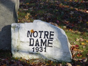 HEAVENLY BAKED GOODS - Review of Notre Dame Bakery, Alfred ...